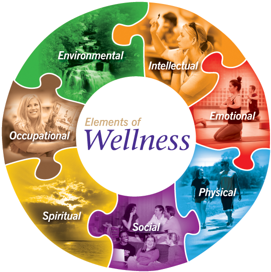 7 dimensions about health plus wellness